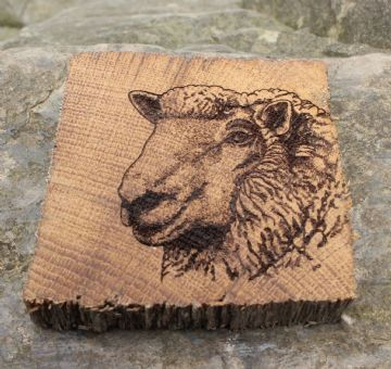 Mat Diod - Defaid | Sheep - Coaster
